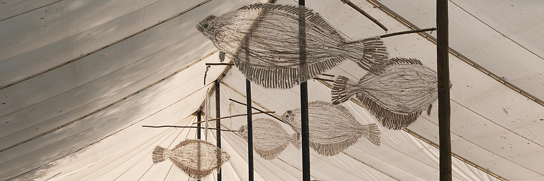 Vissen brf14 7360